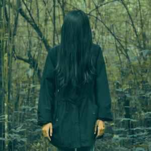 Storie Horror nel bosco